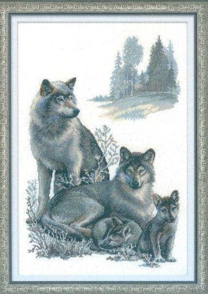 """Вышивка """"Волки"""""""