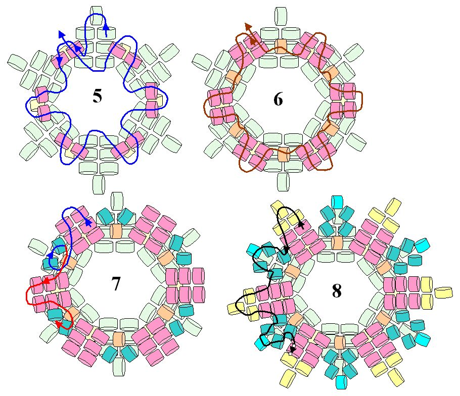 Ндебеле схема ндебельного с бусиной 2. Полный размер.
